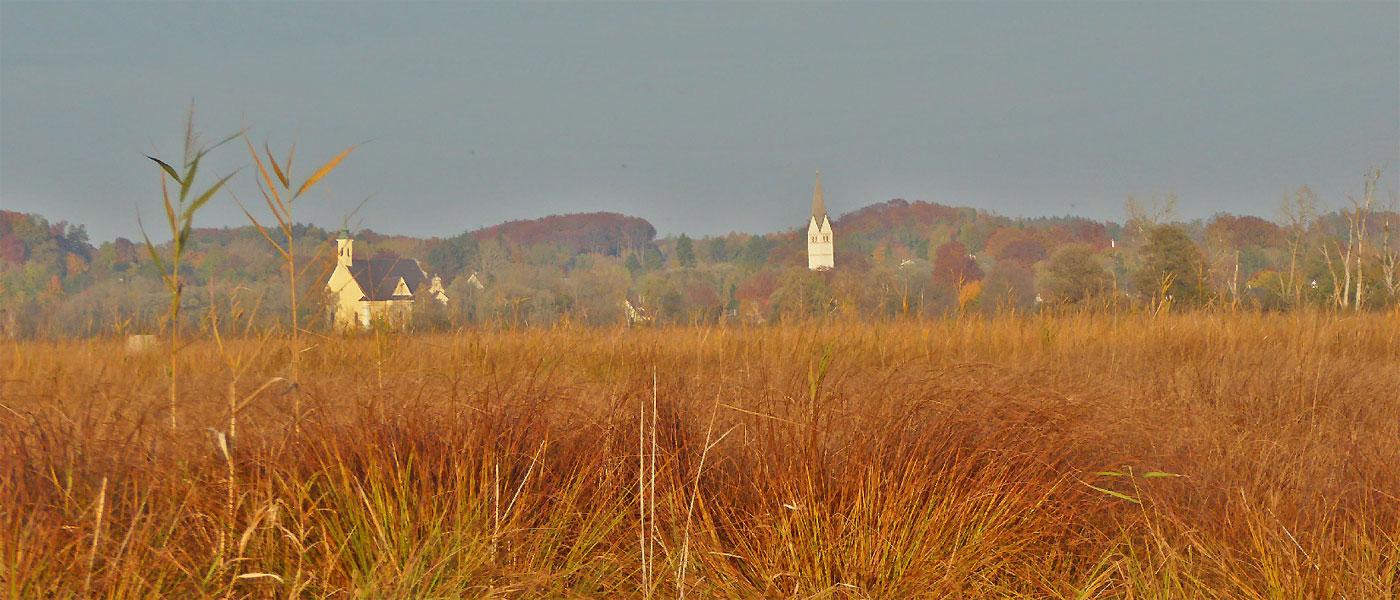 Herzlich willkommen beim Landschaftspflegeverband Fürstenfeldbruck e.V.